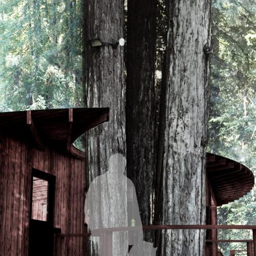 jbohnassociates_redwood_rendering