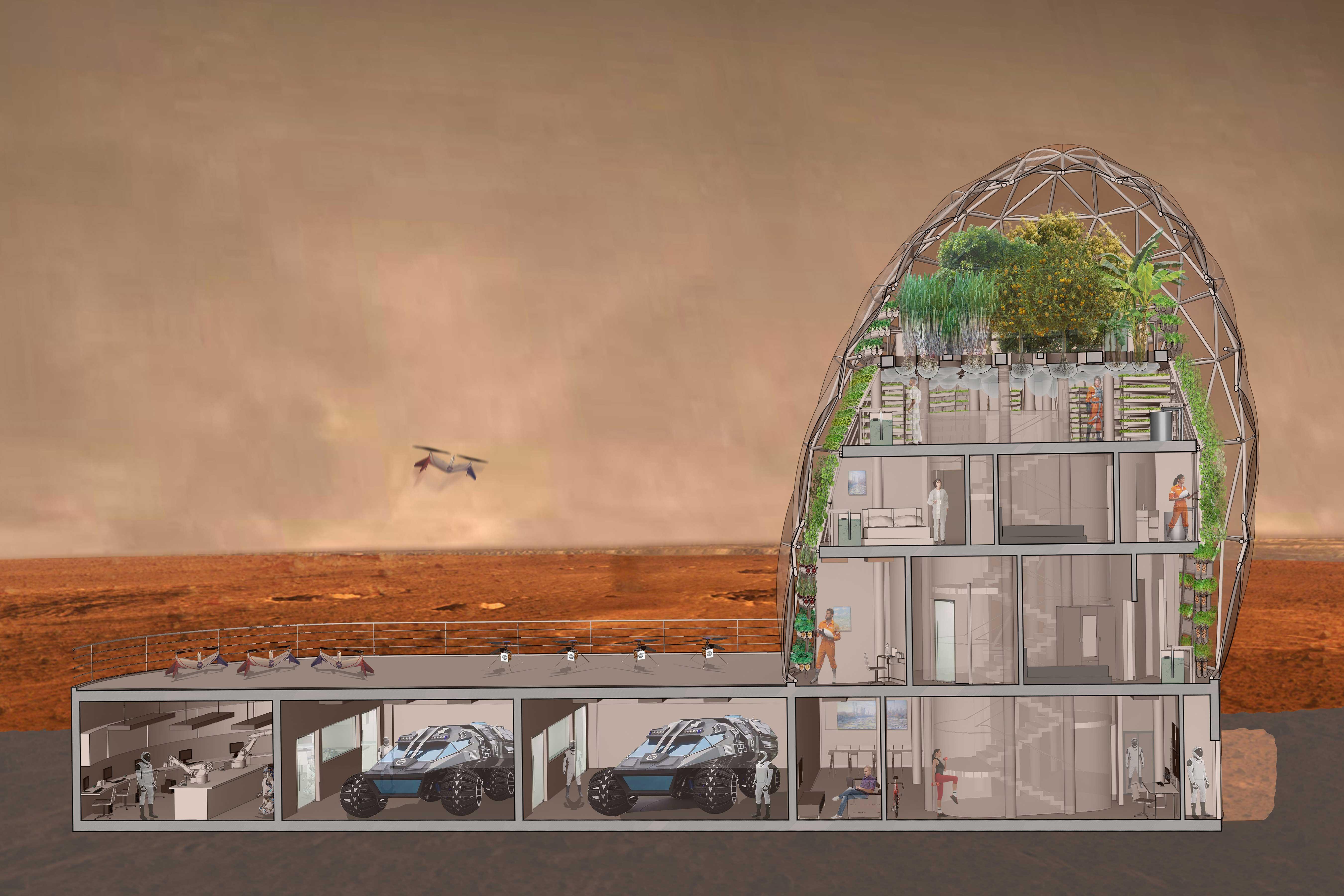 Greenhouse Design Architecture